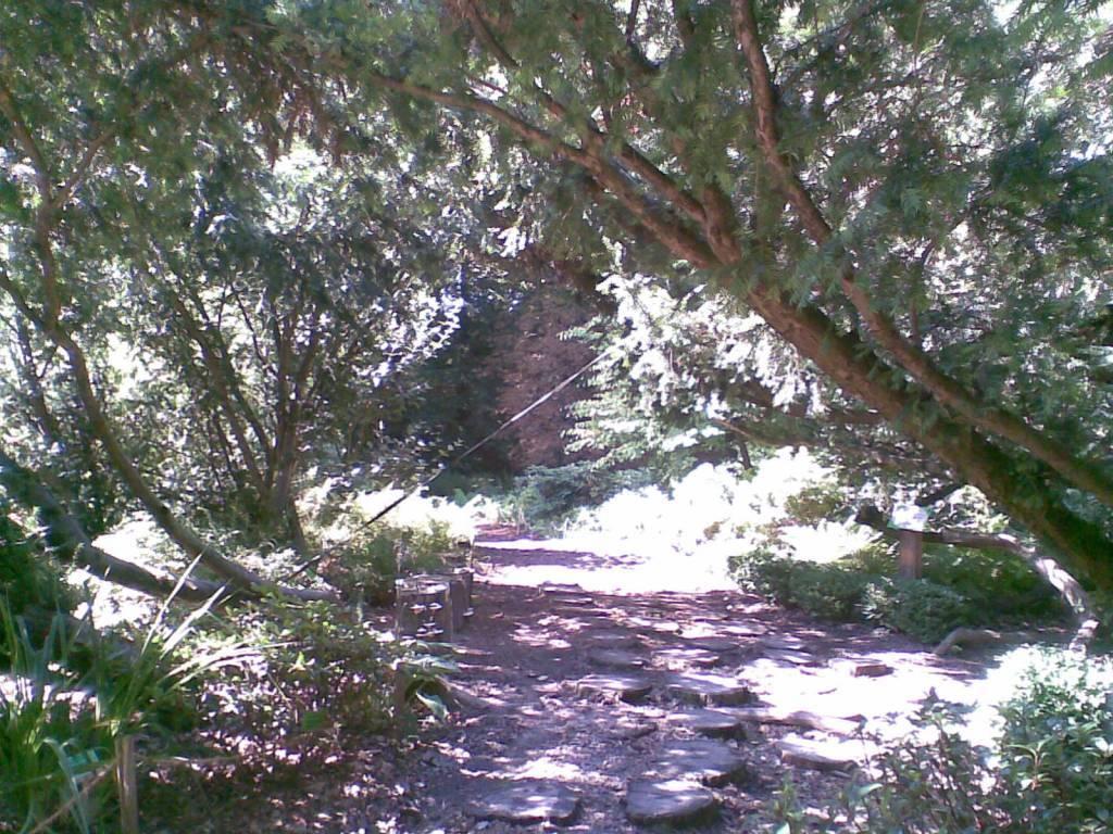 Trasa Rowerowa Ogród Botaniczny W Wojsławicach Traseopl
